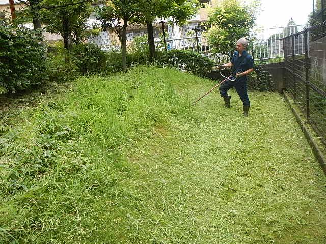 芝・草刈り